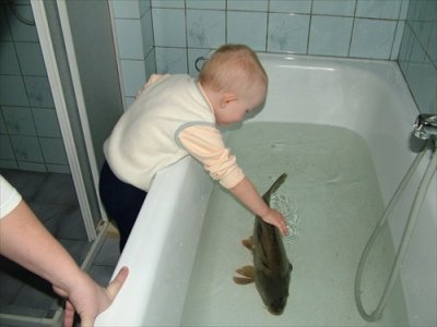 And this carp thought he was just getting a new friend.